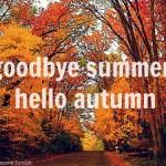 Hello Autumn…imágenes para compartir del otoño
