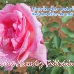 Imágenes con frases para homenajear a las Madres