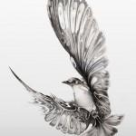 Las mejores imágenes en blanco y negro para compartir