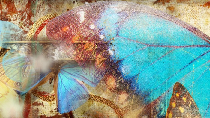 abstract-butterfly-art