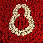 Feliz día de la Mujer: Imágenes para regalar el 8 de marzo