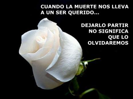 ImagenesDeConsuelo22