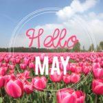 """30 imágenes con mensajes """"Bienvenido Mayo 2016"""" para descargar y compartir"""