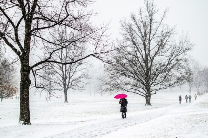 Color-en-invierno