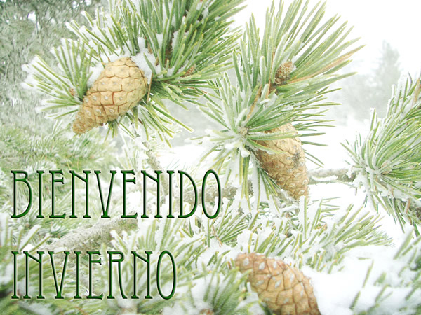 HolaInvierno4