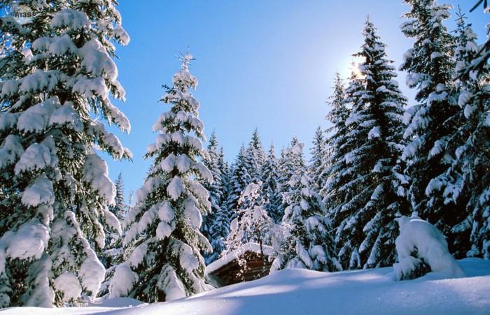 Imagenes Invierno 26