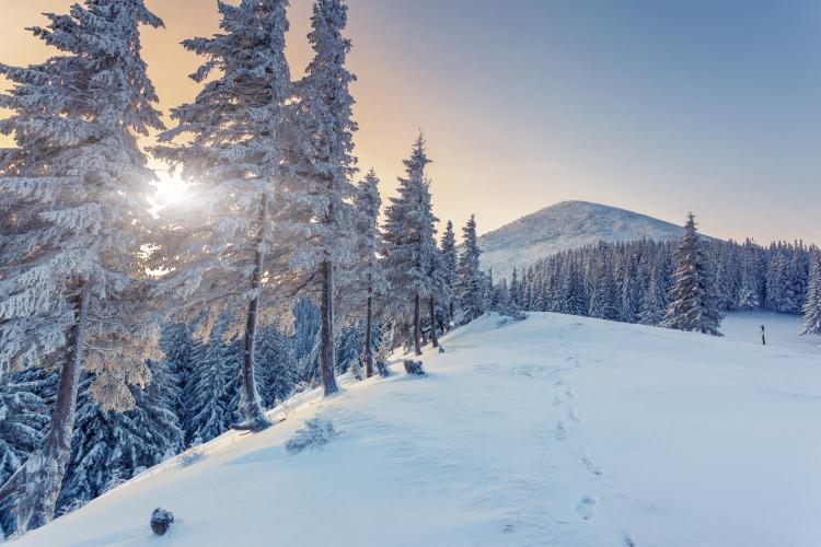 hoy-es-el-primer-dia-del-invierno-solsticio-invierno