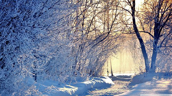 sonata-triste-de-invierno
