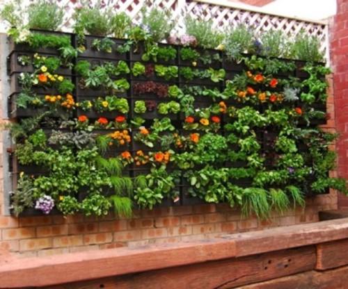 Im genes y decoracion de jardines peque os y verticales for Fotos de jardines pequenos