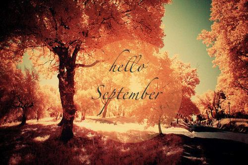 autumn-colorful-fall-hello-Favim.com-2063347