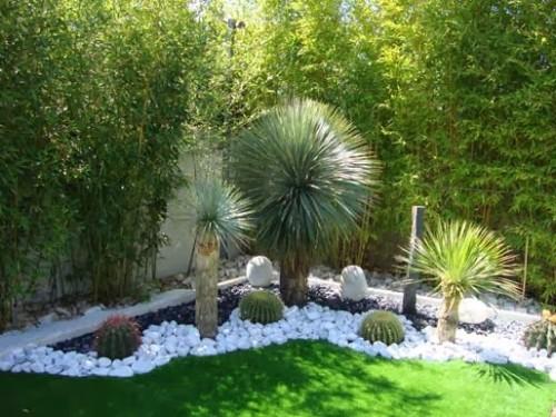 decorar jardín pequeño de cactaceas