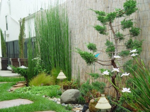 jardines-pequeños-cañas-bambu