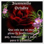 Imágenes divertidas y lindas palabras para darle la bienvenida a octubre