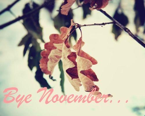 218287-bye-november