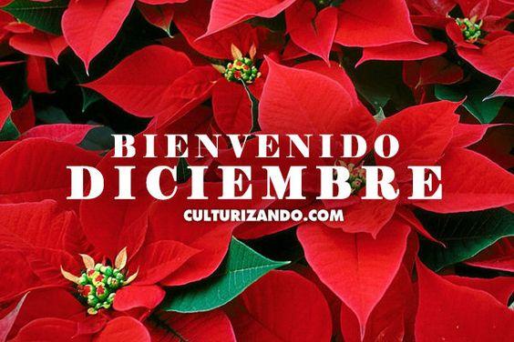 bienvenidodiciembre12