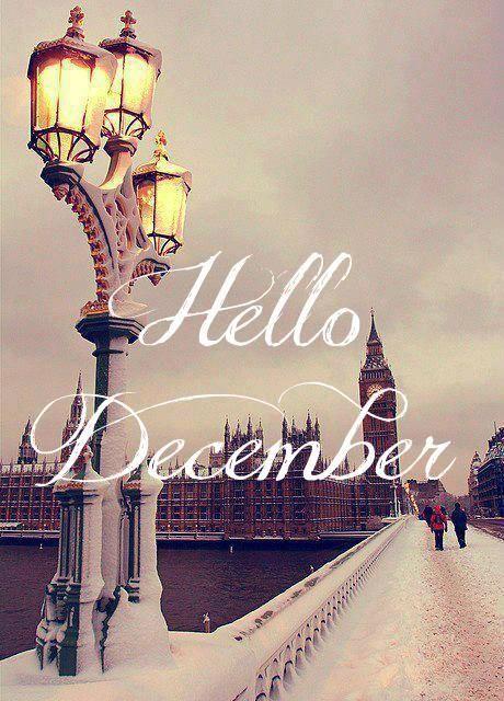 bienvenidodiciembre17