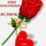 Rosas rojas con frases de amor para el WhatsApp