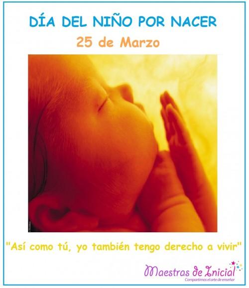 niño por nacer.jpg7
