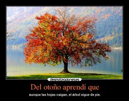 otoño.jpg3