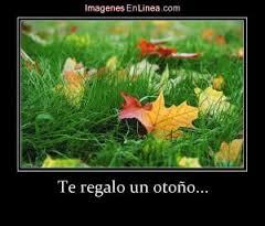 otoño.jpg5