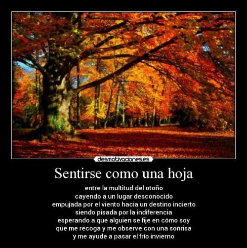 otoño.jpg8