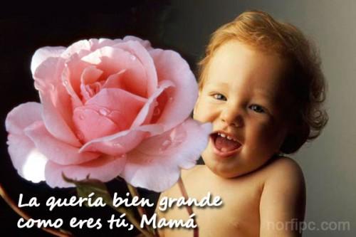para-mama-gracias.jpeg3