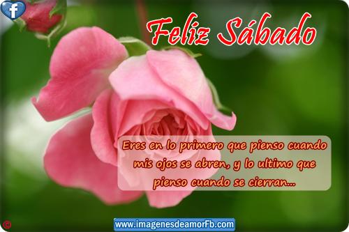 sabadotarjetas-de-feliz-sabado-con-frases-de-amor-para-facebook.png1