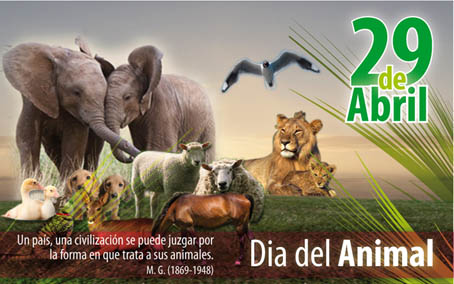 29 de Abril - Día del animal