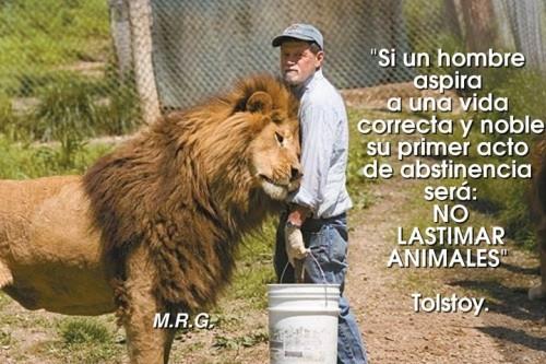 animal.jpg4