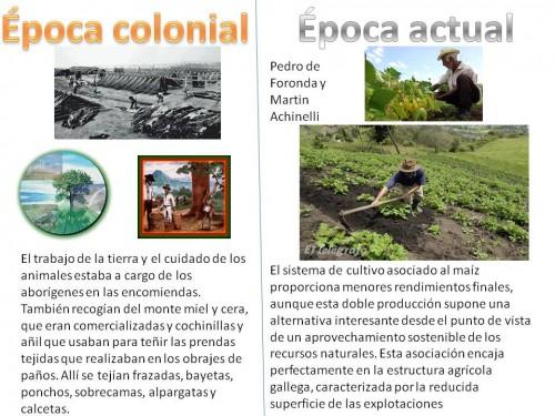 cultivos en epoca colonial