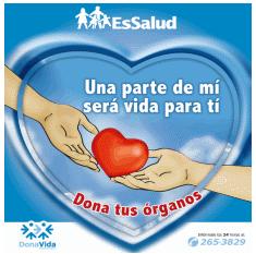 donacion-organos-2011