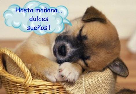 dulces-sueños.png1