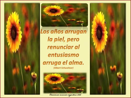 frase creaciones -anamar-argentina-2012