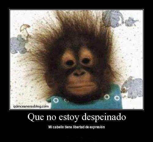 micos3