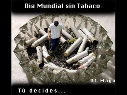 tabaco.jpg9