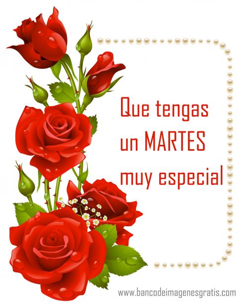 martes5