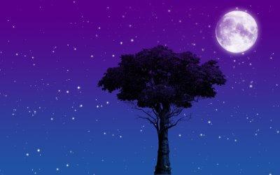 mensajes con frases de Buenas noches Romanticas para Enamorados (36)