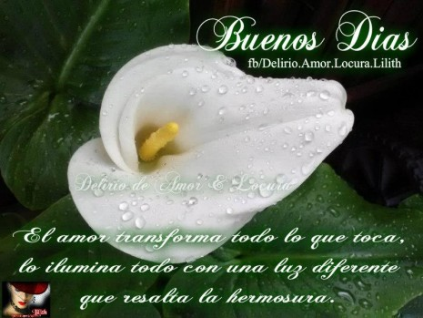 frases de Buenos Dias (10)
