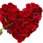 Tarjetas animadas y románticas para regalar el 14 de febrero, San Valentin