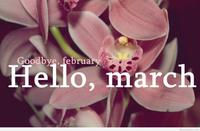 Spring-photo-Goodbye-february-hello-March