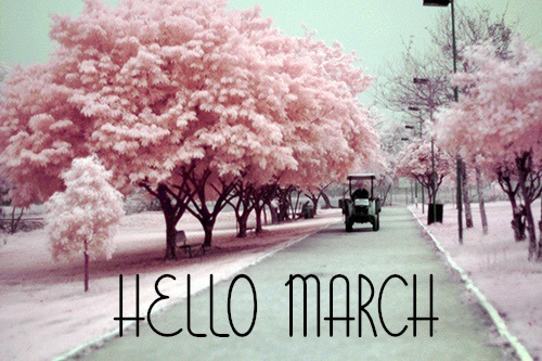 pink-picture-march
