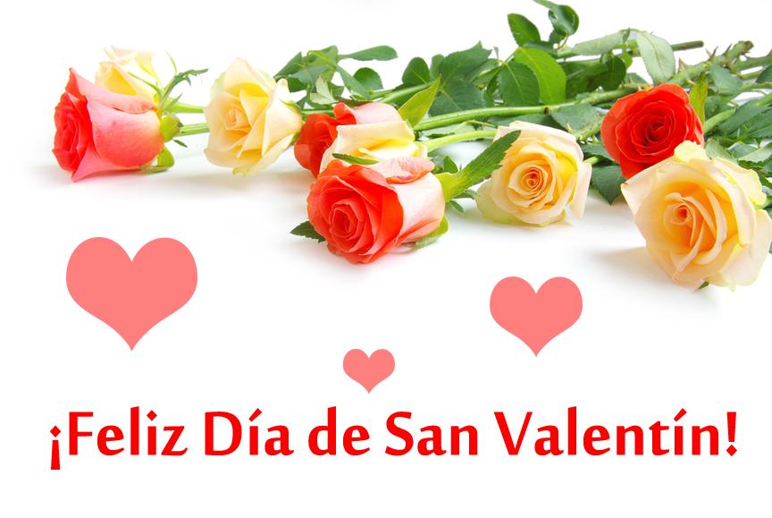 rosas-de-colores-para-el-dia-del-amor-y-la-amistad-14-de-febrero-san-valentin-postales-gratis-con-mensaje