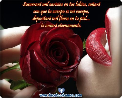 Imagenes De Rosas Con Frases Hermosas De Amor Con Movimiento