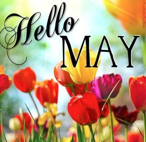 88453-Hello-May