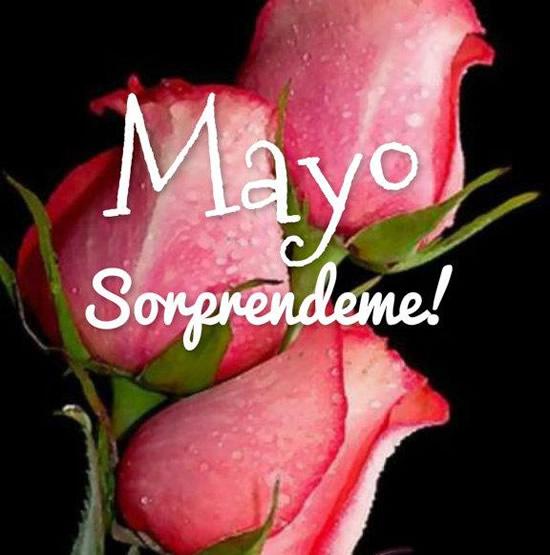 Bienvenido-Mayo-3