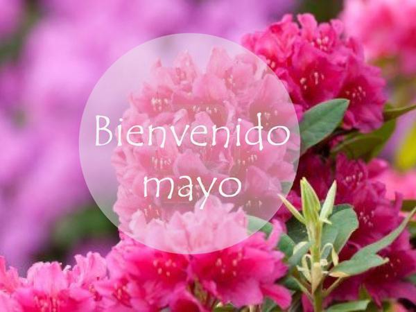 BienvenidoMayo16