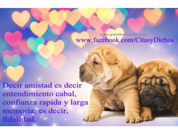 FrasesParaAmigos2