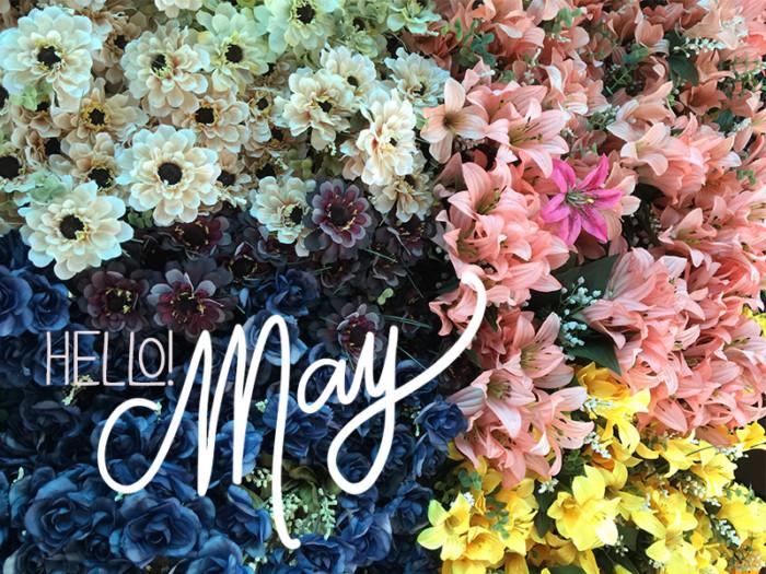 HelloMay (1)