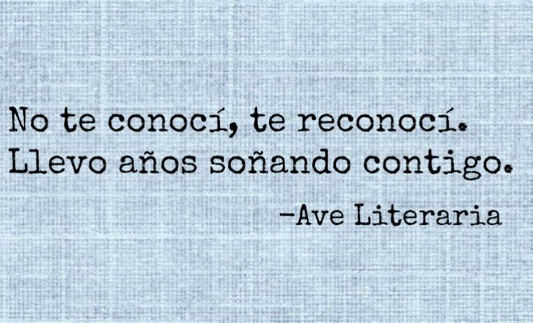 Imagenes Con Frases Literarias De Amor Unpasticheorg