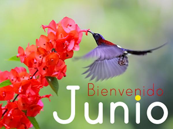 Hola Junio!! Imágenes lindas para dar la bienvenida al mes de Junio